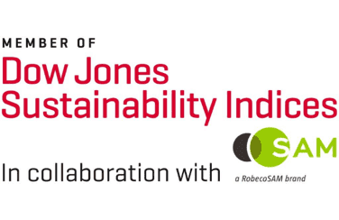 Dow Jones Sustainability Indices World and Emerging Markets Index in 2018-2020
